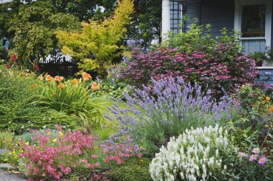 gallery-1461082796-landscaping-image6